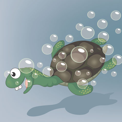"World Turtle Day – Say hello to Tiny Tim in ""I Had A Little Turtle"""